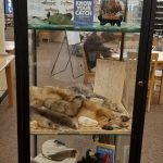 """Missouri Department of Conservation's exhibit, """"Fish, Fowl, and Forest"""""""