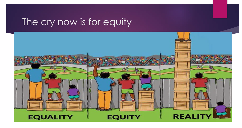 This image from Dr. Bright's presentation illustrates the difference between equality and equity.