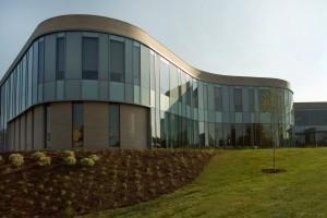Interprofessional Education & Dentistry School
